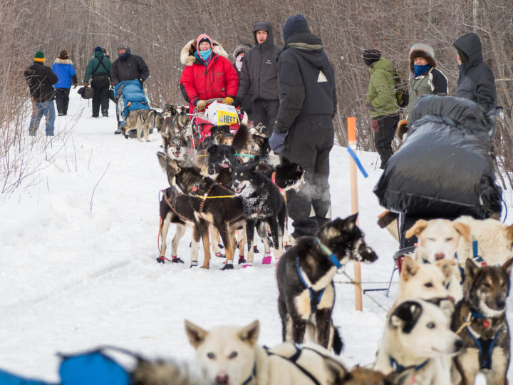 DEJA VU: Iditarod headed this way