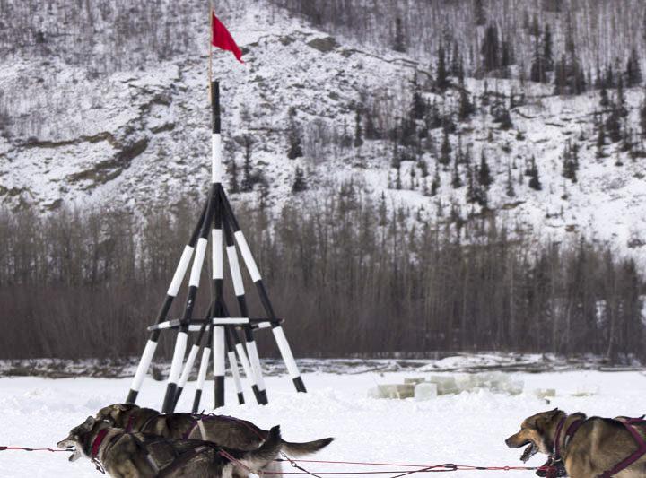 Iditarod 2015: Nenana Checkpoint