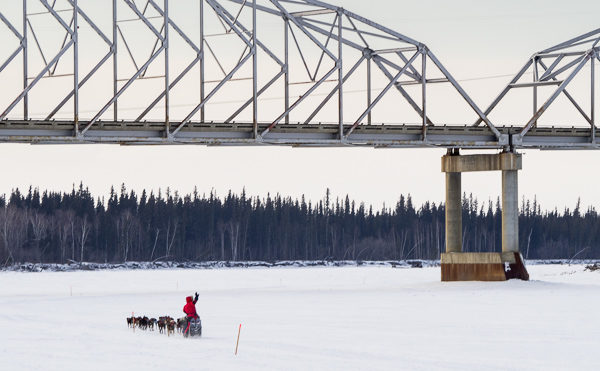 FLASHBACK-- Iditarod teams have faced much harsher conditions since Monday when they passed under the Parks Highway bridge in Nenana.