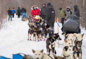 Nenana Iditarod checkpoint