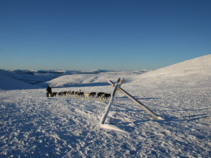 Eagle Summit: Mushing reflections with a side of overflow
