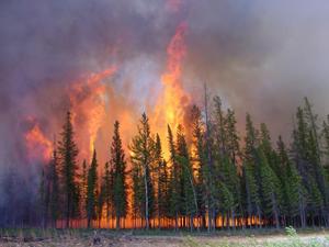 Alaska fire seasons become increasingly worse